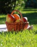De picknick van het nog-leven Stock Foto's