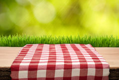 De picknicklijst met cheched tafelkleed stock afbeelding