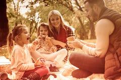 De picknicks werden gemaakt voor de herfst royalty-vrije stock afbeeldingen