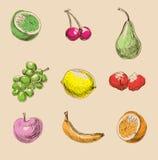 De pictogrammen ter beschikking getrokken van het fruit stijl Royalty-vrije Stock Foto