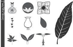 De Pictogrammen van bladeren plaatsen 2 Royalty-vrije Stock Afbeeldingen