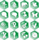 De pictogrammen van de biologie Stock Foto