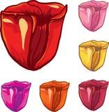 De pictogrammen van de bloem Royalty-vrije Stock Fotografie