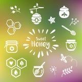 De pictogrammen van de de zomerhoning Royalty-vrije Stock Afbeelding