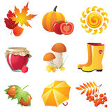 De pictogrammen van de herfst Royalty-vrije Stock Foto's