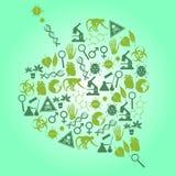De pictogrammen van de kleurenbiologie in bladvorm die worden geplaatst vector illustratie