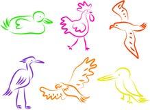 De pictogrammen van de vogel vector illustratie