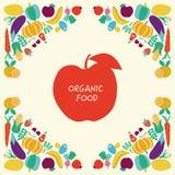 De pictogrammen van het Ecovoedsel geplaatst Groenten en vruchten Royalty-vrije Stock Afbeeldingen