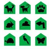 De pictogrammen van huisdieren Stock Fotografie