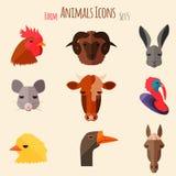 De Pictogrammen van landbouwbedrijfdieren met Vlak Ontwerp Stock Foto