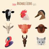 De Pictogrammen van landbouwbedrijfdieren met Vlak Ontwerp Royalty-vrije Stock Foto