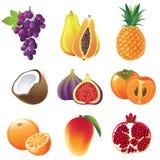 De pictogrammen van vruchten Royalty-vrije Stock Afbeelding