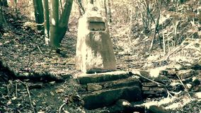 De piedra conmemorativo viejo profundamente en un bosque almacen de video