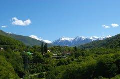 De piek, het bos en het dorp van de sneeuw Stock Afbeelding