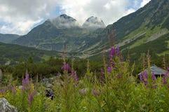 De piek van Maliovitza in Rila berg, Bulgarije Stock Foto