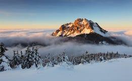 De piek van Roszutec in zonsondergang - de berg Fatra van Slowakije stock fotografie