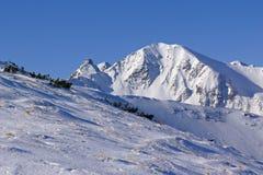 De piek van Wolowiec in de Bergen van Tatra van het Westen Stock Afbeeldingen