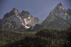 De pieken van de Aiguillesbergketen en groene boschamonix, Frankrijk stock foto