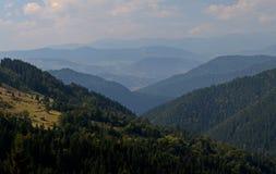 De pieken van de Karpatische Bergen Bergketens met bossen onder blauwe wolken worden behandeld die stock afbeelding