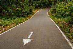 De pijl op de windende weg in het groene park richt aan beholder royalty-vrije stock foto