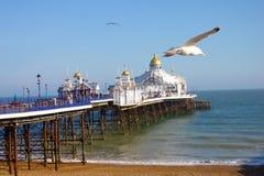 De pijler van Eastbourne op een zonnige dag stock foto's