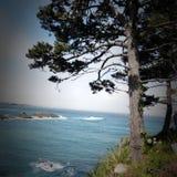 De pijler van santamonica in Californië royalty-vrije stock fotografie