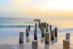 De Pijlers van Napels stock fotografie