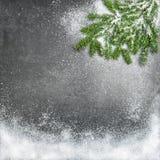 De pijnboom vertakt zich de achtergrond van de de vakantiewinter van sneeuwkerstmis Royalty-vrije Stock Afbeeldingen