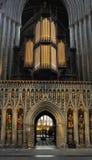 De pijpen van het orgaan, Kathedraal Ripon Stock Foto's