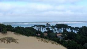 De pilat dunaire Image libre de droits