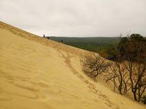 De pilat dunaire image stock