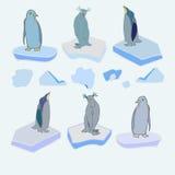 De pinguïnen op ijsijsschollen Vector Kerstmis Royalty-vrije Stock Foto
