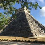 De piramide van Chichenitza in bomen Stock Afbeelding