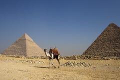 DE PIRAMIDES IN EGYPTE Royalty-vrije Stock Afbeeldingen