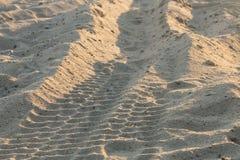 De pistas del camino en la playa Imagen de archivo libre de regalías