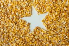 De pitten van het graan met star-shaped gat stock afbeeldingen