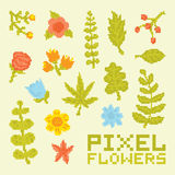 De pixelkunst bloeit vectorreeks Royalty-vrije Stock Foto's