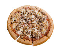 De Pizza van de paddestoel stock foto