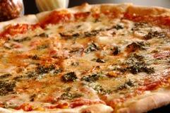 De pizza van de spinazie royalty-vrije stock fotografie