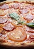 De pizza van pepperonis royalty-vrije stock fotografie