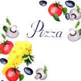 De pizzaingrediënt van de waterverftekening Stock Foto