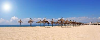 de plażowy palma Majorque Obrazy Stock