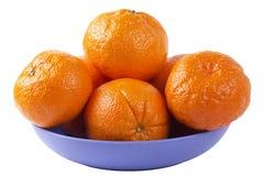 De plaat van de citrusvrucht Stock Foto