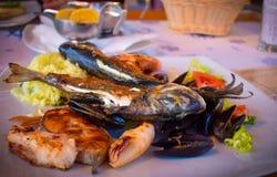 De plaat van heerlijke Adriatische zeevruchten Stock Afbeeldingen