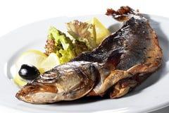 De Plaat van vissen Stock Fotografie