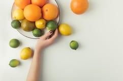 De plaat van de vrouwenholding met citrusvruchten Royalty-vrije Stock Afbeeldingen