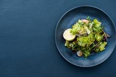 De plaatachtergrond evenwichtige voeding van de voedselsalade royalty-vrije stock afbeeldingen