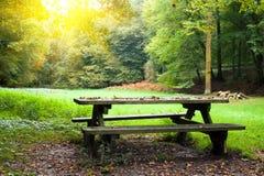 De plaats van de picknick Stock Foto
