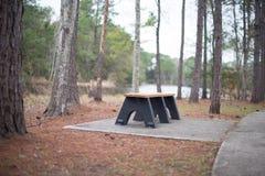 De plaats van de picknick in de herfstbos royalty-vrije stock afbeeldingen