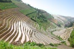 De plaats van de terrassenunesco van de Longjirijst, China Royalty-vrije Stock Afbeelding